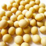 日本で流通する大豆の80%が遺伝子組換えという事実。